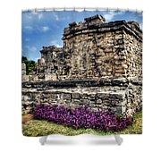 Tulum Temple Ruins Shower Curtain