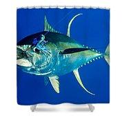 Tuna Magic Shower Curtain