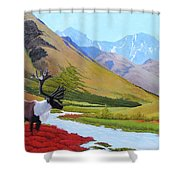 Tundra Shower Curtain