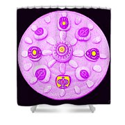 Tunkan Shower Curtain by Eikoni Images