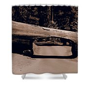 Tunnel Log - Sequoia National Park Shower Curtain