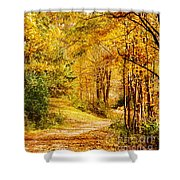 Tunnel Of Gold Shower Curtain