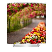 Tunnel Of Roses Shower Curtain