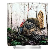 In Strut - Turkey Shower Curtain