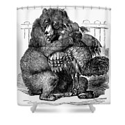Turkey: Crimea Cartoon Shower Curtain