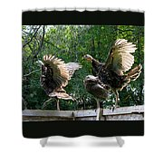 Turkey Dance Shower Curtain