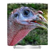 Turkey Named Thanksgiving Shower Curtain