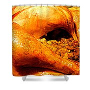 Turkey Time Shower Curtain
