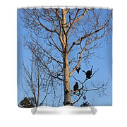Turkey Vulture Tree Shower Curtain