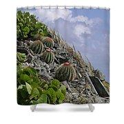 Turks Cap Cactus Shower Curtain