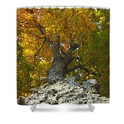 Turning Colors Shower Curtain