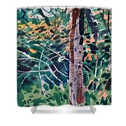 Turning Leaves Shower Curtain