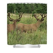 Turning Our Backs To You Shower Curtain