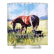 Turning Point Shower Curtain
