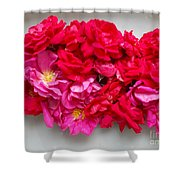 Turning Up Roses Shower Curtain
