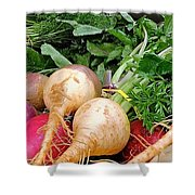 Turnips And Carrots Shower Curtain