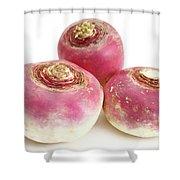 Turnips Shower Curtain