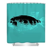 Turquoise Fish Shower Curtain