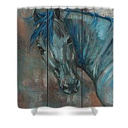 Turquoise Horse Shower Curtain