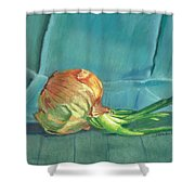 Turquoise Onion Shower Curtain
