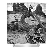 Turret Arch - Bw Shower Curtain