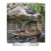 Turtle And Duck Shower Curtain