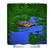 Turtle Coming Up For Air 003 Shower Curtain