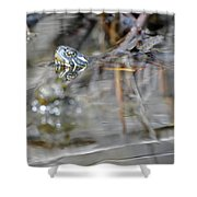 Turtle Eye Reflection Shower Curtain
