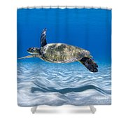 Turtle Flight -  Part 2 Of 3  Shower Curtain