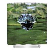 Turtle Head Shower Curtain