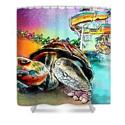 Turtle Slide Shower Curtain