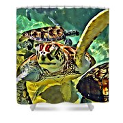Turtle Swim Shower Curtain