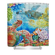Turtle Territory Shower Curtain