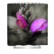 Turtlehead Flower Shower Curtain