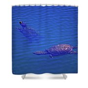 Turtles At The Lily Pond 001 Shower Curtain