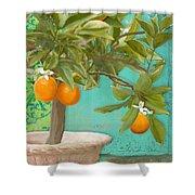 Tuscan Orange Topiary - Damask Pattern 3 Shower Curtain