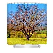 Tuscan Splendor Shower Curtain