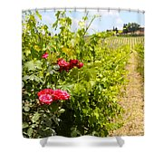 Tuscany Villa And Roses Shower Curtain