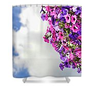 Tutti Frutti Shower Curtain