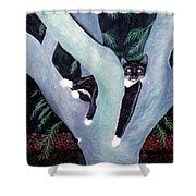Tuxedo Cat In Mimosa Tree Shower Curtain by Karen Zuk Rosenblatt