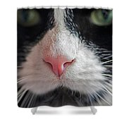 Tuxedo Cat Whiskers And Pink Nose Shower Curtain