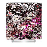 Twali Pashan Shower Curtain by Eikoni Images