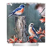 Tweeting Shower Curtain by Janet Moss