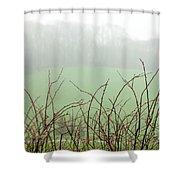 Twigs In Mist Shower Curtain