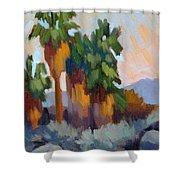 Twilight At Indian Canyons  Shower Curtain