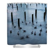 Twilight Geese Shower Curtain