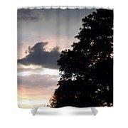 Twilight Landscape Shower Curtain
