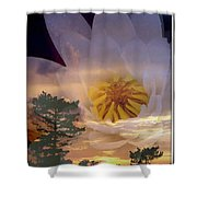 Twilight Lily Shower Curtain