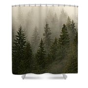 Twilight Mist Shower Curtain
