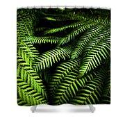 Twilight Rainforest Fern  Shower Curtain